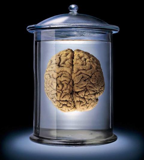 Brain-Jar4