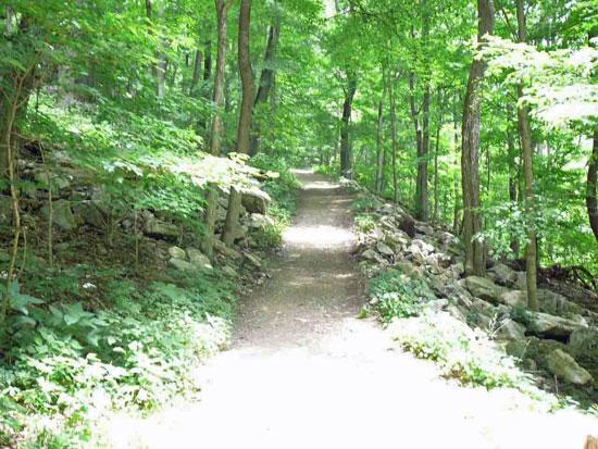 The Cascades Trail.  Giles County, Virginia