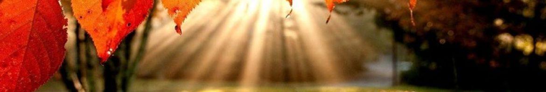 cropped-septembercover.jpg
